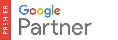 Google Partner 500